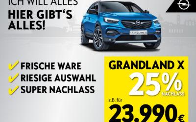 Ich will alles – hier gibt's alles: Opel Grandland X